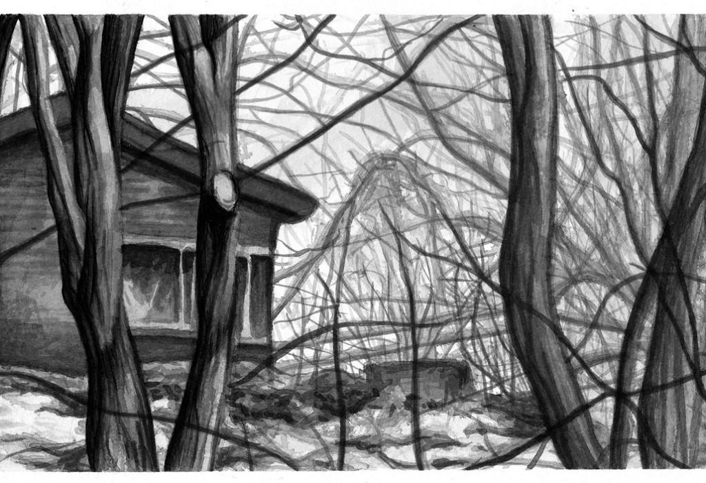 scanwoods